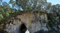 Coromandel and Cathedral Cove Day Trip from Auckland