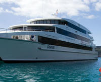 4-Day Bay of Islands Tour from Auckland including Overnight Cruise