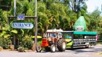 Tropical Fruit World with Wildlife Boat Cruise, Mini Train Ride from Gold Coast