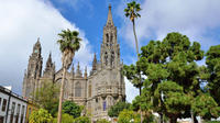 Shore excursion: North of Gran Canaria Tour with Wine & Snacks