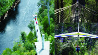 Tahune Airwalk Admission with Optional Cable Hang Gliding From Geeveston