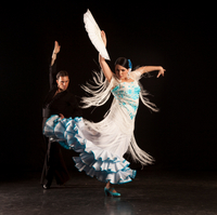 Madrid Super Saver: Madrid Illuminations Evening Tour and Flamenco Show at Torres Bermejas