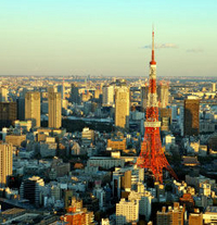 Tokyo Tower, Tea Ceremony and Sumida River Cruise Day Tour