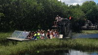 3-hour Everglades Tour from Miami