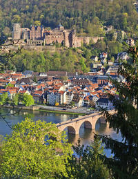 Three Day Frankfurt to Munich - Romantic Road, Heidelberg, Rothenburg