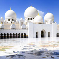 Abu Dhabi Shore Excursion: Sheikh Zayed Mosque and Falcon Hospital