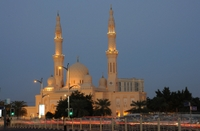 Dubai City Half-Day Sightseeing Tour