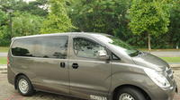 """Private Singapore Arrival Transfer Changi Airport To Hotel"""""""