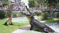 Australian Reptile Park General Entry Ticket, Gosford Natural Activities & Attractions