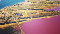 Pink Lake Fixed-Wing Scenic Flight from Geraldton image 1
