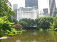Central Park Movie Sites Walking Tour Picture