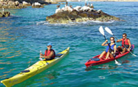 Picture of Los Cabos Arch and Bay Kayak Adventure