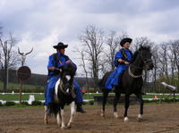Godollo Palace and Traditional Farm Trip with Horse Show and Carriage Ride