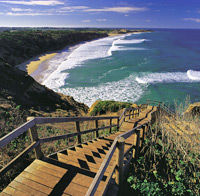 travel tours activities great ocean road tour from melbourne