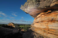 Kakadu Day Tour from Darwin including Ubirr Art Site and Mary River Wetlands Cruise