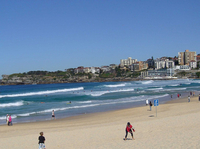 Sydney: Bondi Beach und Kings Cross Tour plus Sydney inklusive Mittagessen