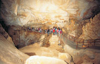 Tagestour: Blue Mountains und Jenolan Caves
