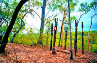 Tiwi Islands Cultural Experience from Darwin Including Flights