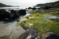 Magical Mull, Iona and the West Highlands Isles