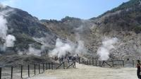 Full-Day Tour of Naples and Solfatara Volcano from Sorrento