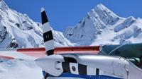45-Minute Glacier Highlights Ski Plane Tour from Mount Cook, Mount Cook Air Activities