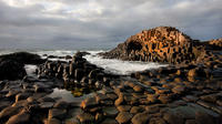 Giant's Causeway Day Tour from Belfast
