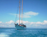 Picture of Fijian Islands and Snorkel Full-Day Whales Tale Cruise including Beach BBQ Lunch