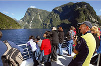 Doubtful Sound Wilderness Cruise from Queenstown, Queenstown Tours and Sightseeing