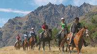 Half-Day Walter Peak Horse Trek from Queenstown, Queenstown Horse Riding & Horse Trekking