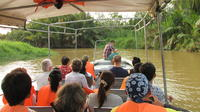 Weston Fireflies River Cruise from Kota Kinabalu City