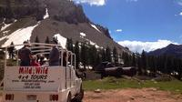 La Plata Canyon Jeep Tours near Durango and Cortez CO