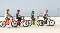 Private Bike Ride or Bike Excursion : Electric Or Traditional Guided Bike Rides In Savannah