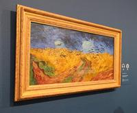 Van Gogh Museum Amsterdam Guided Tour with Art Historian