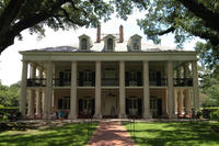 Experience Cajun Country: Swamp Boat Adventure and Plantations Tour from New Orleans