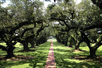 Small-Group Tour of Oak Alley and Laura Plantation from New Orleans