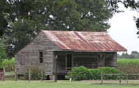 Westbank Plantation Tour