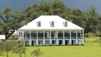 Whitney Plantation, Museum of Slavery and St Joseph Plantation Tour
