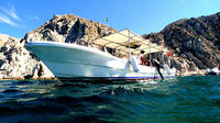 Private Tour: Sightseeing Cruise in Cabo San Lucas