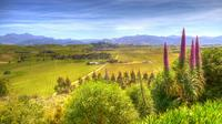 Full-Day Wine Gourmet and Scenic Delight Tour from Blenheim, Blenheim Wineries & Vineyards