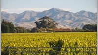 Private Tour: Marlborough Winter Wine and Scenic Tour from Blenheim, Blenheim Tours and Sightseeing