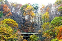 Book Fall Foliage Tour from New York City Now!