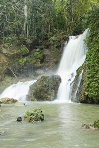 Black River and YS Falls Sightseeing Cruise from Montego Bay