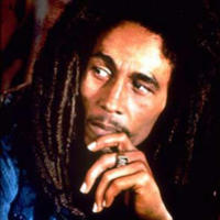 Jamaica's Spirit of Reggae - the Bob Marley Experience from Montego Bay