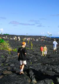 Big Island Day Trip: Volcano Adventure from Maui