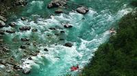 Tara River Rafting Full Day Trip from Kotor