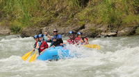 Pacuare River Rafting Expedition Class III-IV from San Jose