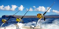 Deep Sea Fishing from St Lucia
