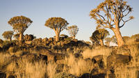 14-Day Namibia Highlights Tour from Windhoek