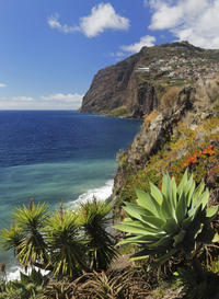 Grand Madeira Island Tour - Porto Moniz and Santana