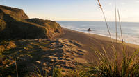 Full-Day Wild West Coast Photo and Discovery Tour including Lunch from Auckland, Auckland CBD Tours and Sightseeing
